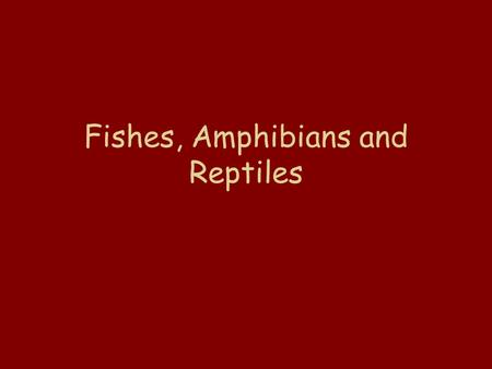 Fishes, Amphibians and Reptiles. Animals with a backbone are called vertebrates.