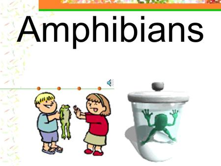 of the Reptiles and Amphibians of North America  Explained