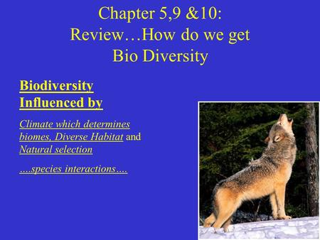 Chapter 5,9 &10: Review…How do we get Bio Diversity Biodiversity Influenced by Climate which determines biomes, Diverse Habitat and Natural selection ….species.