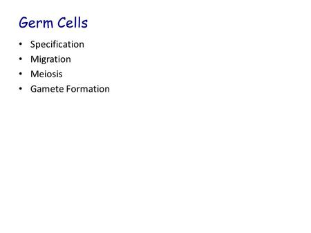 Germ Cells Specification Migration Meiosis Gamete Formation.