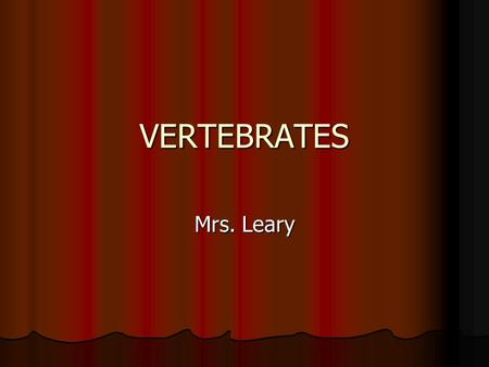 VERTEBRATES Mrs. Leary. Shared Characteristics Backbones with spinal cord Backbones with spinal cord Muscular system Muscular system Central nervous system.