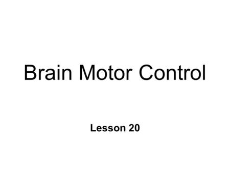 Brain Motor Control Lesson 20. Hierarchical Control of Movement n Association cortices & Basal Ganglia l strategy : goals & planning l based on integration.