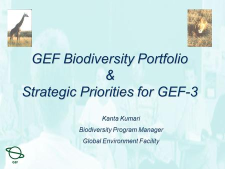 GEF Biodiversity Portfolio & Strategic Priorities for GEF-3 Kanta Kumari Biodiversity Program Manager Global Environment Facility.