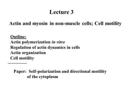 Lecture 3 Actin and myosin in non-muscle cells; Cell motility Outline: Actin polymerization in vitro Regulation of actin dynamics in cells Actin organization.
