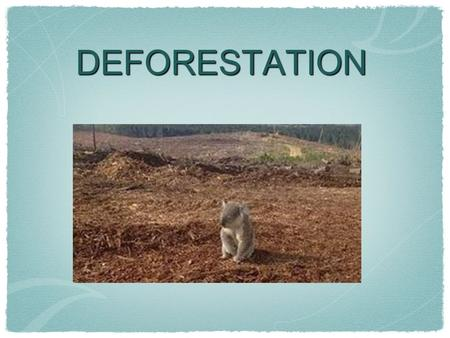 DEFORESTATION. What is deforestation? Deforestation refers to the cutting, clearing, and removal of rainforest or related ecosystems into less bio- diverse.