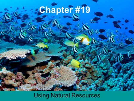 Chapter #19 Using Natural Resources. Chapter 19.1 Notes Ecosystem all of the living and nonliving things in a certain place. (Forest) Community- (Living.