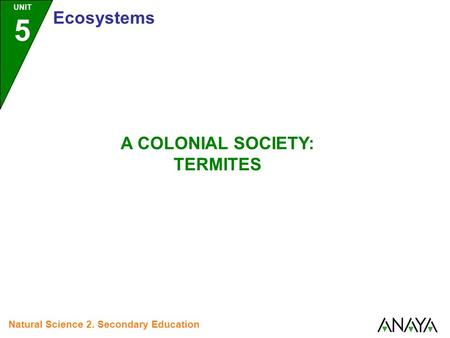 UNIT 5 Ecosystems Natural Science 2. Secondary Education A COLONIAL SOCIETY: TERMITES.