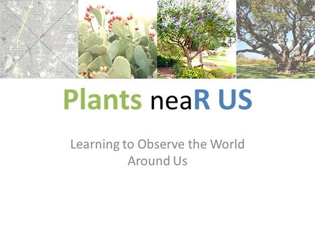 Plants nea R US Learning to Observe the World Around Us.