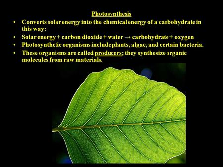 Photosynthesis Converts solar energy into the chemical energy of a carbohydrate in this way: Solar energy + carbon dioxide + water → carbohydrate + oxygen.