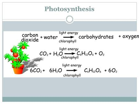 Photosynthesis. Photosynthesis: Step 1 – Light-Dependent Reaction Sunlight is used to split water into hydrogen (H) and oxygen (O). The Oxygen is released.