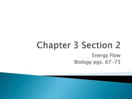 Energy Flow Biology pgs