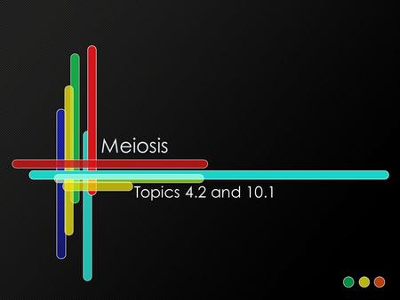 Meiosis Topics 4.2 and 10.1. Assessment Statements 4.2.1State that meiosis is a reduction division of a diploid nucleus to form haploid nuclei. 4.2.2Define.
