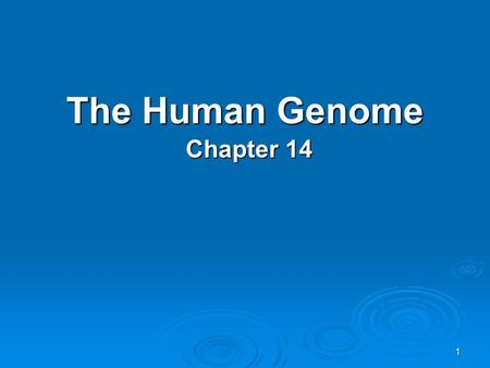 1 The Human Genome Chapter 14. 2 I.Human Heredity A.Human chromosomes – There are 23 pairs of chromosomes. Half the chromosomes are from each parent.