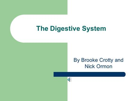 The Digestive System By Brooke Crotty and Nick Ormon.