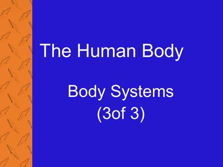 The Human Body Body Systems (3of 3). 4: The Human Body 2 Physiology of the Circulatory System (1 of 2) Pulse The wave of blood through the arteries formed.