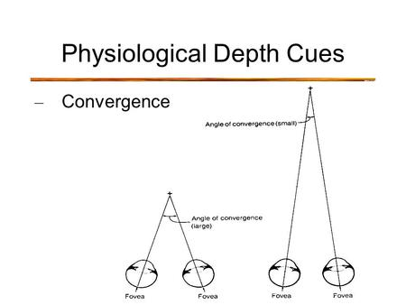 Physiological Depth Cues – Convergence. Physiological Depth Cues – Convergence – small angle of convergence = far away – large angle of convergence =