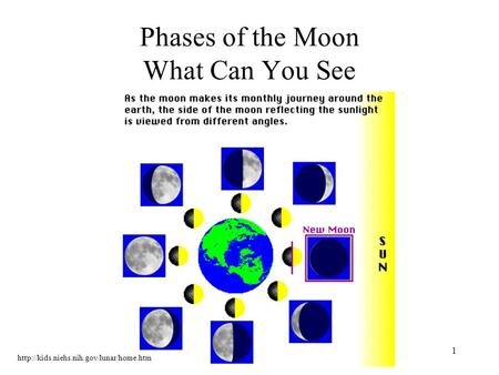 1 Phases of the Moon What Can You See