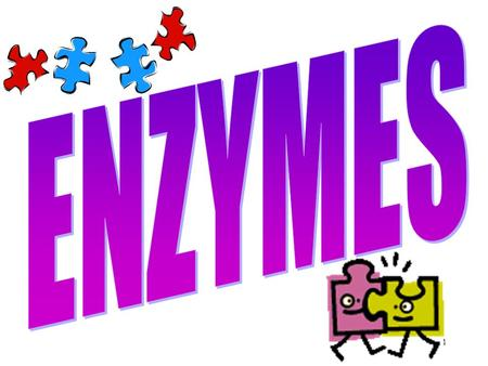 1. 2 What's an Enzyme? 1.Enzymes are __________. 2.Enzymes are ___________. Catalysts _________ chemical reactions End in –____ (Ex: sucrase, catalase)