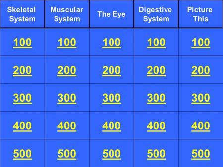 200 300 400 100 200 300 400 100 200 300 400 100 200 300 400 100 200 300 400 100 Skeletal System 500 Muscular System The Eye Digestive System Picture This.