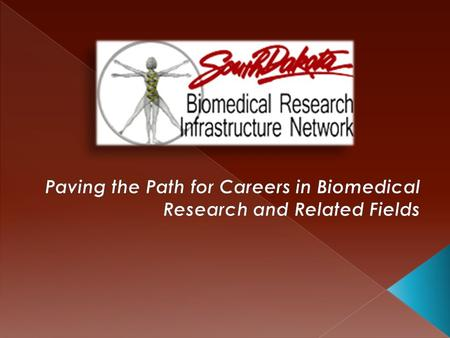 What is SD BRIN? SD BRIN Opportunities for Students Biomedical-Related Careers.