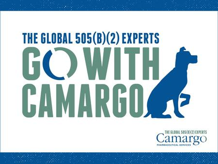 Camargo Pharmaceutical Services International Drug Development Consulting Firm World's Expert - US 505(b)(2) regulatory pathway. Drug Development: Approximately.