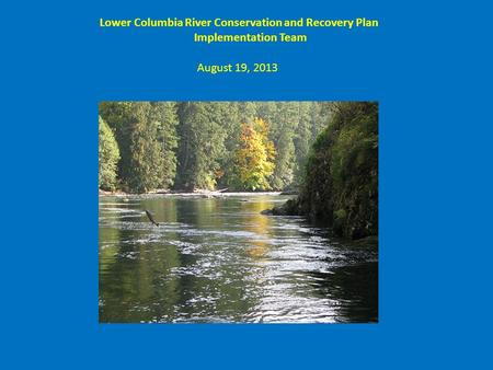 Lower Columbia River Conservation and Recovery Plan Implementation Team August 19, 2013.