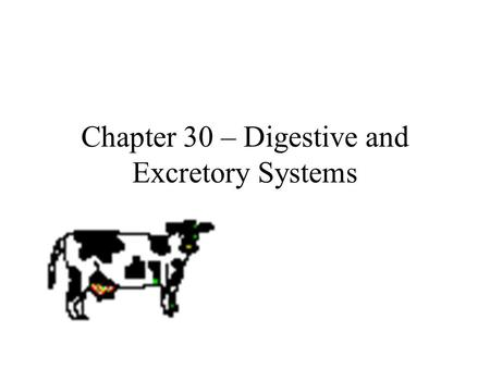 Chapter 30 – Digestive and Excretory Systems. Let's hear from Tim and Moby  ystem/digestivesystem/