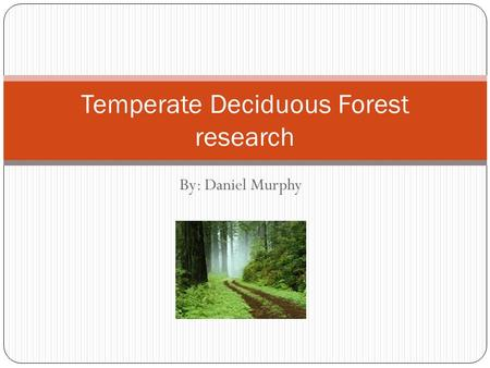 By: Daniel Murphy Temperate Deciduous Forest research.