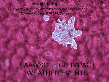 SAAWSO HIGH IMPACT WEATHER EVENTS Ismail Gultepe EC, Cloud Physics and Severe Weather Research Section Toronto, Ontario M3H 5T4, Canada.