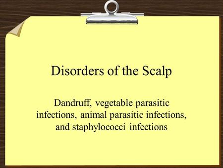 Disorders of the Scalp Dandruff, vegetable parasitic infections, animal parasitic infections, and staphylococci infections.