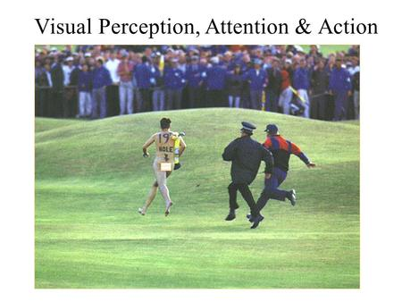 Visual Perception, Attention & Action. Anthony J Greene2.