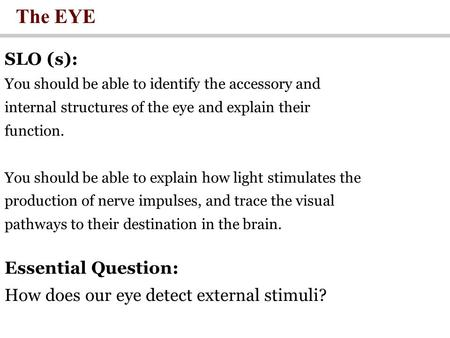 The EYE SLO (s): You should be able to identify the accessory and internal structures of the eye and explain their function. You should be able to explain.
