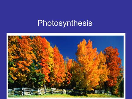 Photosynthesis Table of Contents 1.Science Process Skills-----------------------1 2.Parts of a Cell----------------------------------# 3.Classifying.
