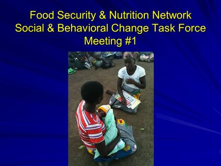 Food Security & Nutrition Network Social & Behavioral Change Task Force Meeting #1.