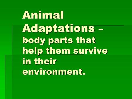 Animal Adaptations – body parts that help them survive in their environment.