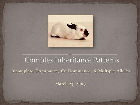 Incomplete Dominance, Co-Dominance, & Multiple Alleles March 23, 2009.