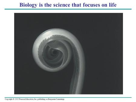 Copyright © 2005 Pearson Education, Inc. publishing as Benjamin Cummings Biology is the science that focuses on life.