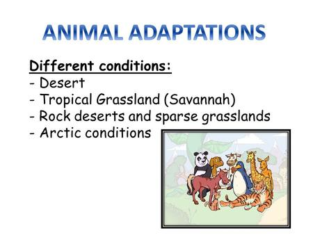Different conditions: - Desert - Tropical Grassland (Savannah) - Rock deserts and sparse grasslands - Arctic conditions.