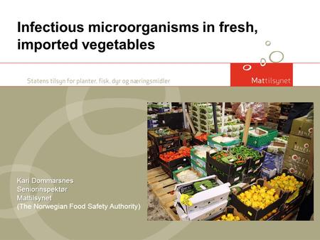 Kari Dommarsnes Seniorinspektør Mattilsynet Infectious microorganisms in fresh, imported vegetables Kari Dommarsnes Seniorinspektør Mattilsynet (The Norwegian.