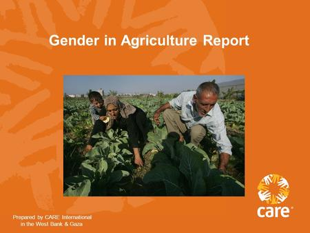 Gender in Agriculture Report Prepared by CARE International in the West Bank & Gaza.