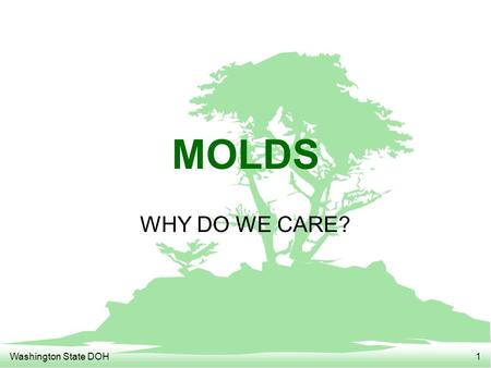 Washington State DOH1 MOLDS WHY DO WE CARE?. Washington State DOH2 MOLDS F Health effects F Common molds F Testing for molds F Clean-up of moldy environments.