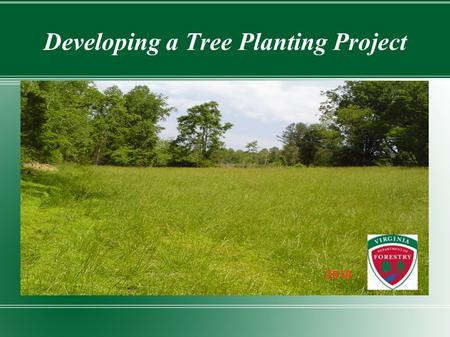 Developing a Tree Planting Project. Establishment Steps Determine area to plant Determine appropriate species to plant Site prepare area & plant trees.