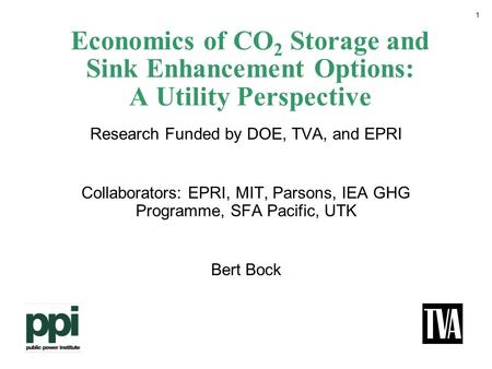 1 Economics of CO 2 Storage and Sink Enhancement Options: A Utility Perspective Research Funded by DOE, TVA, and EPRI Collaborators: EPRI, MIT, Parsons,