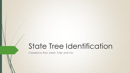 State Tree Identification Created by Rick, Sarah, Tyler, and Mo.