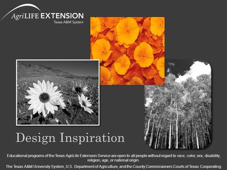 Design Inspiration Educational programs of the Texas AgriLife Extension Service are open to all people without regard to race, color, sex, disability,