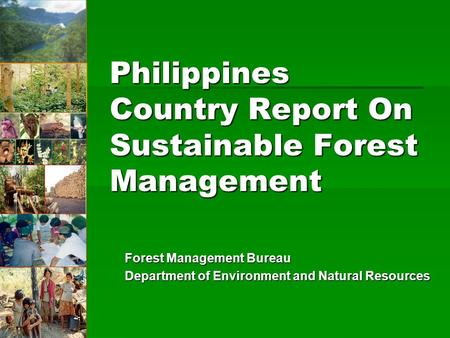 Philippines Country Report On Sustainable Forest Management
