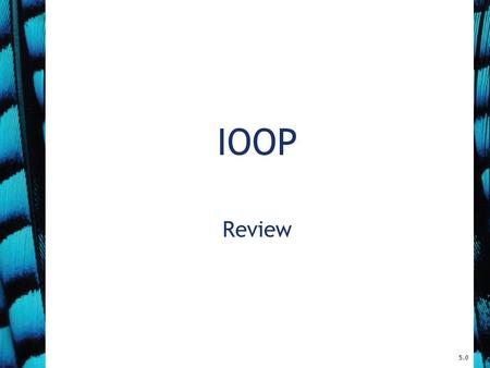 IOOP Review 5.0. Topics (1) Bits and Bytes Classes and Objects Primitive vs. Object Types Java Operators and Expressions Keyword this null vs. void Enumerated.