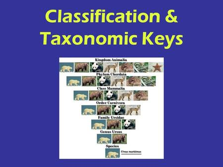 Classification & Taxonomic Keys. Any characteristic of an organism that makes it better able to survive in its environment. ADAPTATION.
