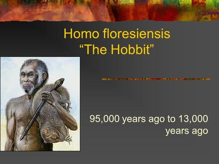 "Homo floresiensis ""The Hobbit"" 95,000 years ago to 13,000 years ago."