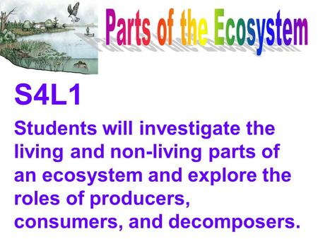 Parts of the Ecosystem S4L1